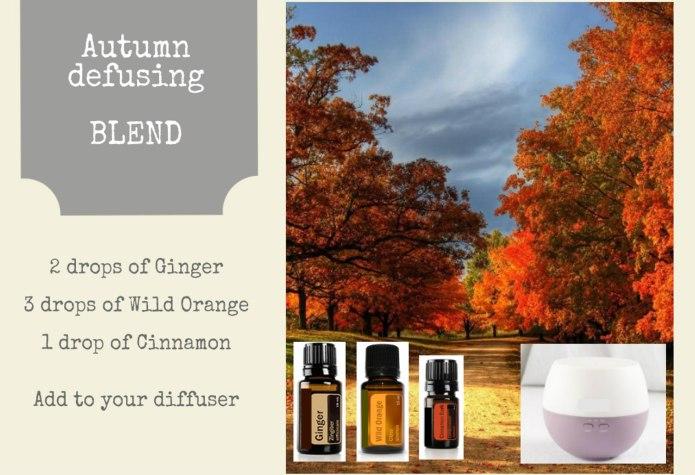 Autumn Diffusing blend