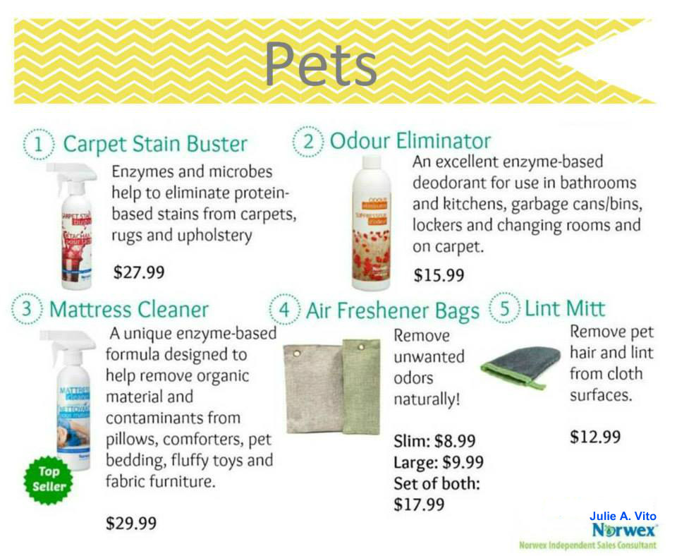100 Remove Carpet Stains With Norwex Enzyme