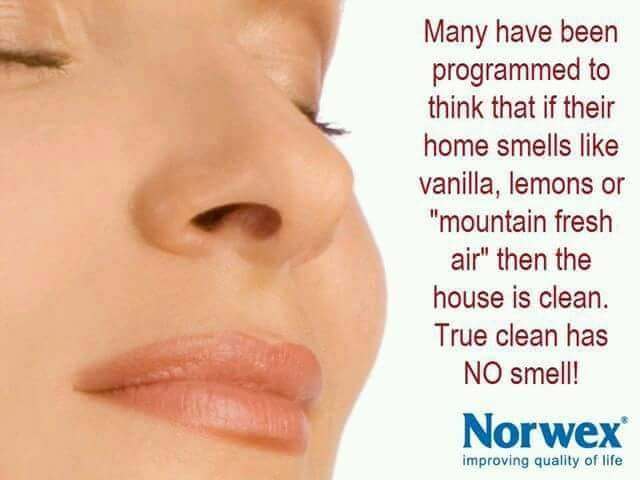 Clean Has No Smell
