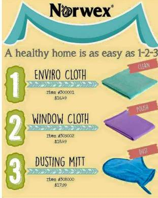 Healthy Home 1-2-3.old