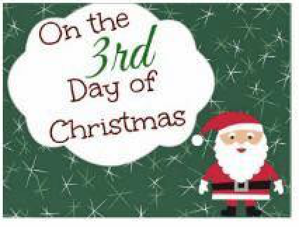 Day 3 Of 12 Days Of Christmas Deals Clean Home Healthy Family