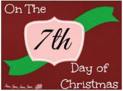 Day 7 Of 12 Days Of Christmas Deals Clean Home Healthy Family